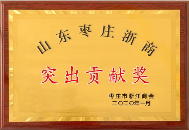 山东枣庄浙商突出贡献奖
